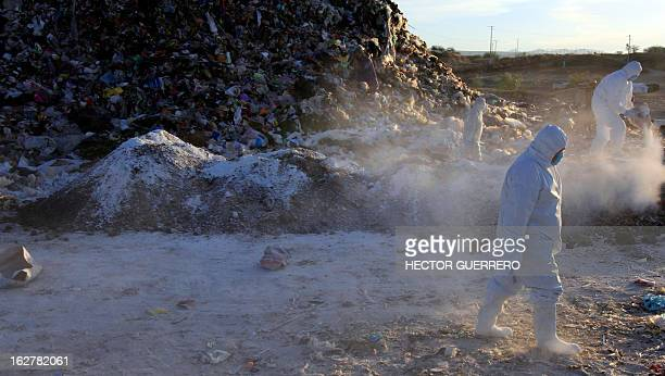 Workers of the Mexican Secretariat of Agriculture Livestock Rural Development Fisheries Nutrition water chemical and lime on infected chicken manure...