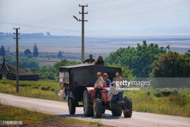 workers on a tractor going to rose harvest in isparta. - emreturanphoto stock pictures, royalty-free photos & images