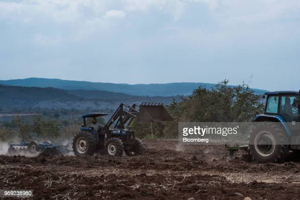 Workers operate tractors to plow a field after blue agave is harvested at the Becle SAB Jose Cuervo farm in the town of Tequila Jalisco state Mexico...