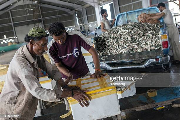 Workers pack fish into polystyrene boxes at a harbor in Gwadar Balochistan Pakistan on Tuesday Aug 2 2016 Gwadar is the cornerstone of Chinese...