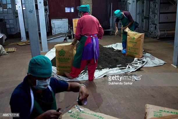 Workers pack tea at Makaibari tea factory Set up in 1859 off Kurseong in the Darjeeling hills the Makaibari estate is the worlds first tea factory...