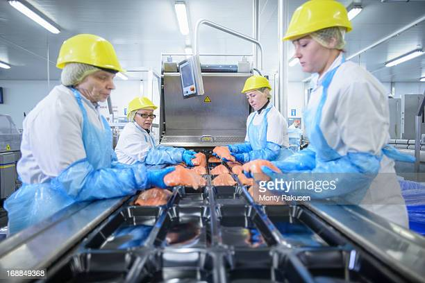 Workers packing salmon in food factory