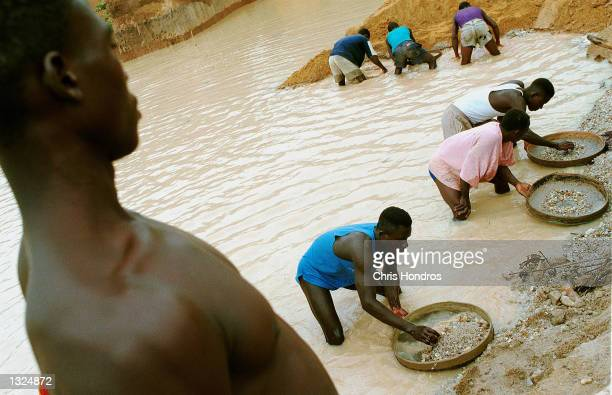 Workers pan for diamonds in a government controlled diamond mine June 15 2001 near Kenema Sierra Leone Diamonds mined both legally by the government...