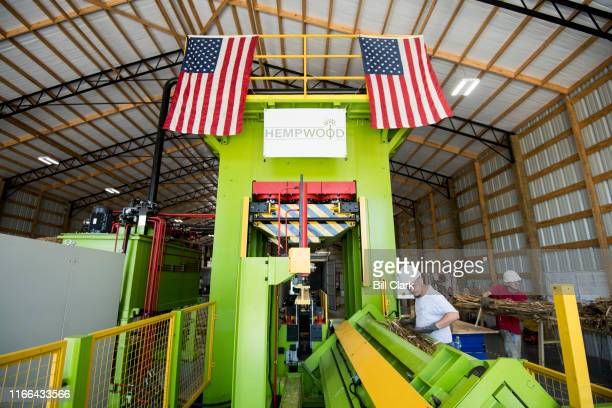 Workers place treated hemp stalks into a press at HempWood in Murray Ky on Thursday Sept 5 2019