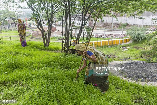 Workers plant neem and other seeds as part of a forestation project to stop rainwater flows in Dewas Madhya Pradesh India on Tuesday July 5 2016...