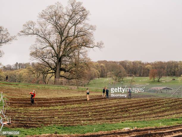 Workers plow fields at the Stone Barns farm in Pocantico Hills New York US on Friday April 21 2017 As customers are increasingly demanding freerange...