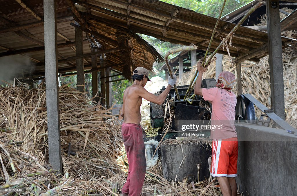 Workers pressing sugar cane, part of the process of making brown sugar in a small factory in Slumbung village. Most Indonesian people use brown sugar to sweeten foods and beverages. Brown sugar that made in the traditional way is cheaper than white sugar. Indonesia still depends on imported white sugar to supplement its own production. The Ministry of Commerce expects to import as much as 2.26 million tonnes of raw sugar this year. Indonesian sugar consumption is expected to increase approximately 3 percent to 5.2 million tonnes this year due to rising industrial demand. The International Sugar Organization estimates world sugar production on October 1, 2013 October 1, 2014 will be down 1.8 percent to 178.5 million tonnes. Meanwhile, demand for sugar in the period rose by 1.9 percent to 175 million tonnes..