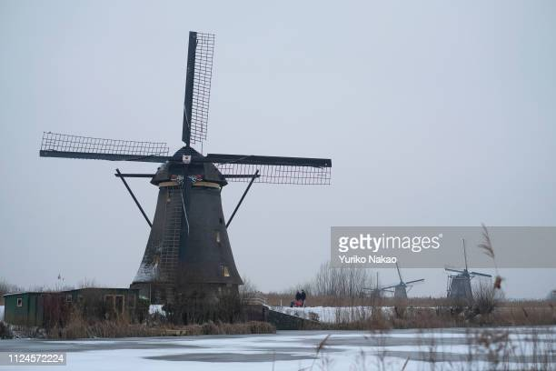 Workers push wheelbarrows as UNESCO World Heritage Kinderdijk windmills stand in Kinderdijk, near Rotterdam, Netherlands January 24, 2019.