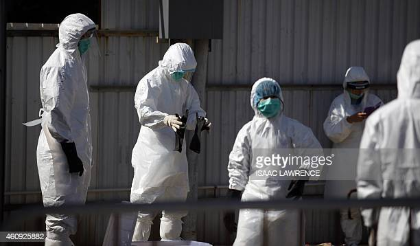 Workers put on protective gear during a chicken cull in Hong Kong on December 31 after the deadly H7N9 virus was discovered in poultry imported from...