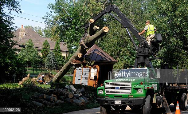 Workers remove a downed tree from Hurricane Irene at the Thornton Woods condominium development in Baltimore County Maryland Monday August 29 2011