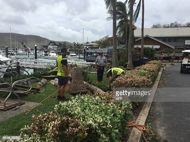 Workers remove a fallen tree on Hamilton Island after strong Cyclone Debbie hit the Whitsundays Islands in Queensland on March 29 2017 Towns were cut...