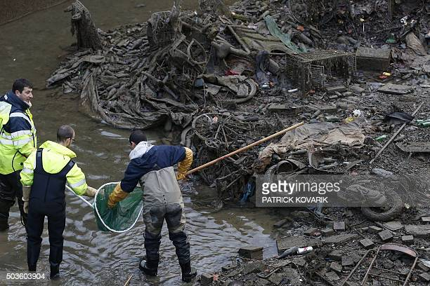 Workers remove fish from the canal Saint Martin in Paris on January 6 2016 before a drainage and cleaning operation / AFP / PATRICK KOVARIK