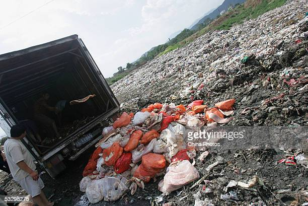 Workers remove spoiled pork from a truck to a dump under the direction of officers with the Beijing Health Supervision Institute on July 28, 2005 in...