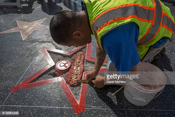 Workers repair the Hollywood Walk of Fame star of Republican presidential candidate Donald Trump after it was vandalized by a protester on October 26...