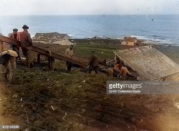 Workers salt meat for foxes on the Pribilof Islands, Alaska, 1918. Note: Image has been digitally colorized using a modern process. Colors may not be...