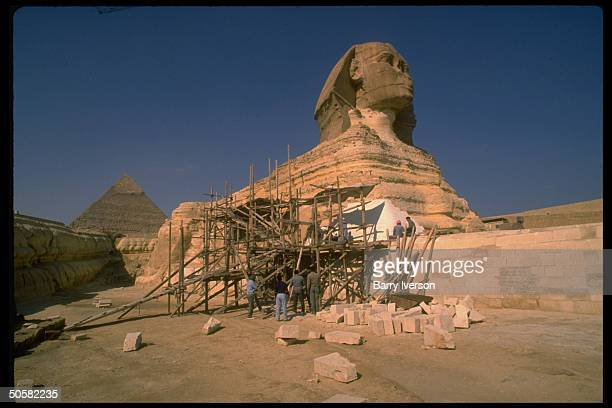 Workers scaffolding by fragile limestone Sphinx suffering fr ravages of time water erosion pollution