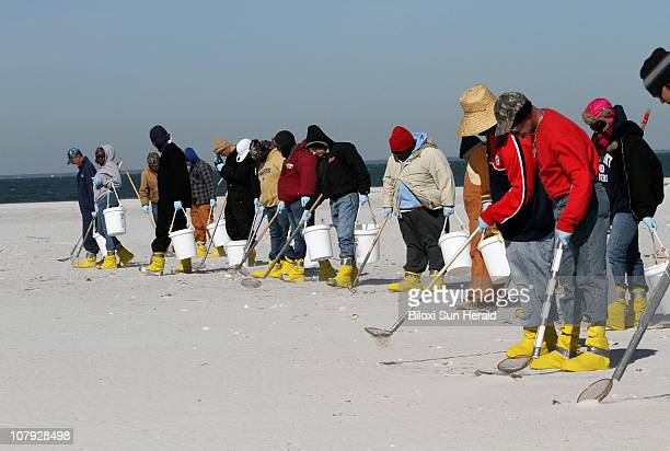 BP workers search for tall balls from the Deepwater Horizon oil spill on Horn Island in the Mississippi Sound south of Pascagoula Mississippi Friday...