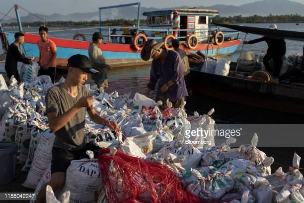 Workers secure bags of mussels in Tan Quang harbor in Quang Nam province Vietnam on Wednesday June 26 2019 Fishermen are on the front lines of Asias...
