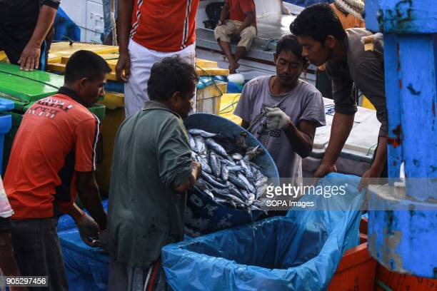 LHOKSEUMAWE ACEH INDONESIA Workers seen moving fish containers from ships to be auctioned at the traditional market of Lhokseumawe City The...