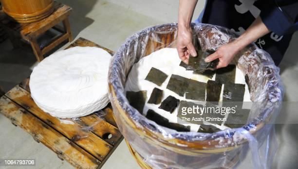 KYOTO JAPAN NOVEMBER 07 Workers slice the 'Shogoin Kabura' turnip to make Japanese pickles 'Senmai Zuke' at the factory of the pickles company...