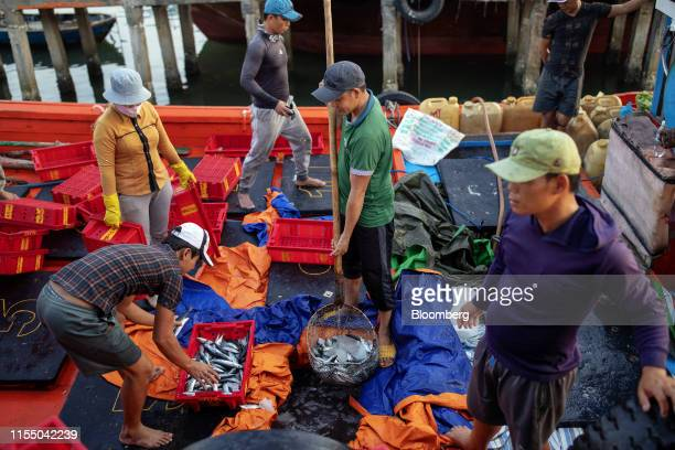 Workers sort fish on a boat in Tan Quang harbor in Quang Nam province Vietnam on Wednesday June 26 2019 Fishermen are on the front lines of Asias...