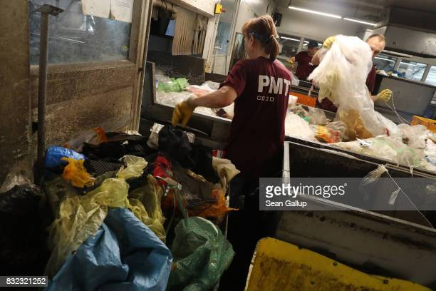 Workers sort materials that sorting machines missed at the ALBA sorting center for the recycling of packaging materials on August 15 2017 in Berlin...