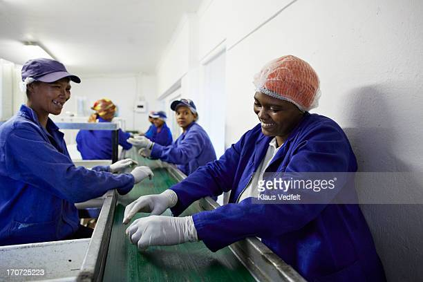 Workers sorting figs at small business