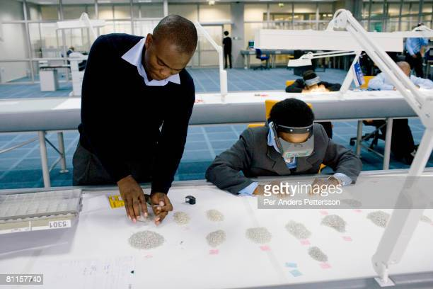 Workers sorts raw diamonds as they are displayed on long tables at the new Diamond Trading Company the world's largest and most advanced...