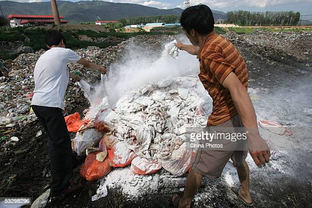Workers sprinkle disinfection powder on spoiled pork before burying them at a dump on July 28, 2005 in Changping County of Beijing, China. Beijing...