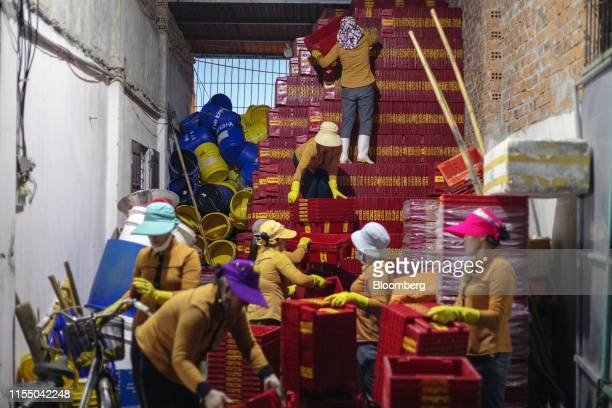 Workers stack crates at the end of their shift near Tan Quang harbor in Quang Nam province Vietnam on Wednesday June 26 2019 Fishermen are on the...