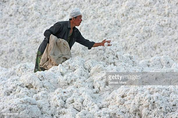 October 10: Workers stock a harvest of cotton in a cotton factory on October 10, 2006 near Korla, Xinjiang province, China.