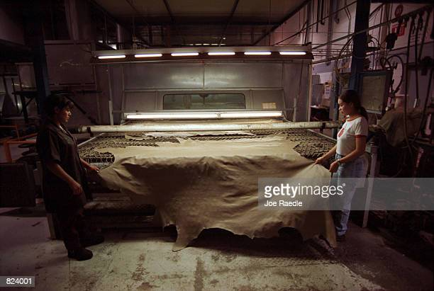Workers tan leather for car seats in a maquila in Ciudad Juarez, Mexico. From Matamoros, Mexico to Tijuana, U.S. Owned maquiladoras employ a large...