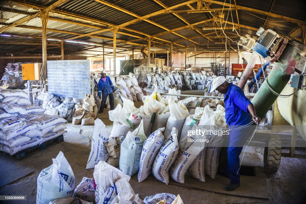 Workers tie sacks of agricultural feed on the Ehlerskroon farm, outside Delmas in the Mpumalanga province, South Africa on Thursday, Sept. 13, 2018. A legal battle may be looming over plans by South Africas ruling party to change the constitution to make it easier to expropriate land without paying for it, with widely divergent views over the process that needs to be followed. Photographer: Waldo Swiegers/Bloomberg via Getty Images