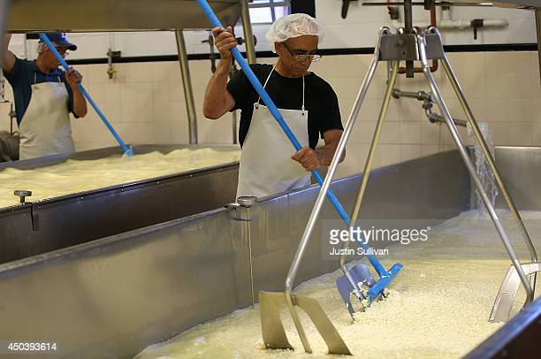 Workers turn cheese curds while making cheese at Vella Cheese on June 10 2014 in Sonoma California The Food and Drug Administration has issued an...