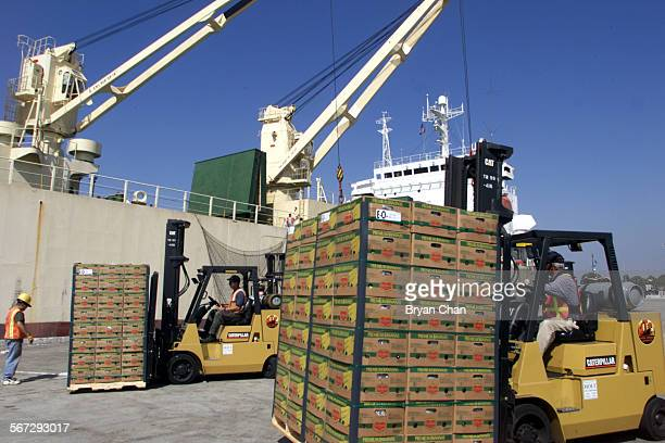 Workers unload bananas from Ecuador for Del Monte at the Port of Hueneme DIGITAL IMAGE SHOT ON 8/22/2000