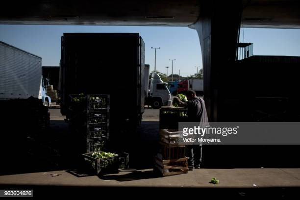 Workers unload vegetables and greens at CEAGESP during the trucker's strike on May 29 2018 in San Paulo BrazilThe food supply for the population was...