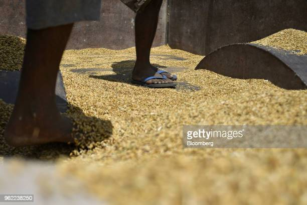 Workers unload wheat from a truck at a wholesale grain market in Rewari Haryana India on Wednesday March 28 2018 India's Prime Minister Narendra...