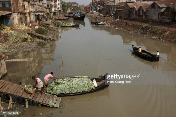 workers unloading a boat with white cabbage on a polluted river, bandarban, bangladesh - slum stock pictures, royalty-free photos & images