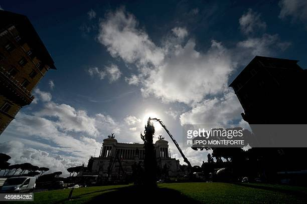 Workers use a crane to install a christmas tree in front of the Vittoriano on December 3 2014 at Piazza Venezia in Rome AFP PHOTO / FILIPPO MONTEFORTE