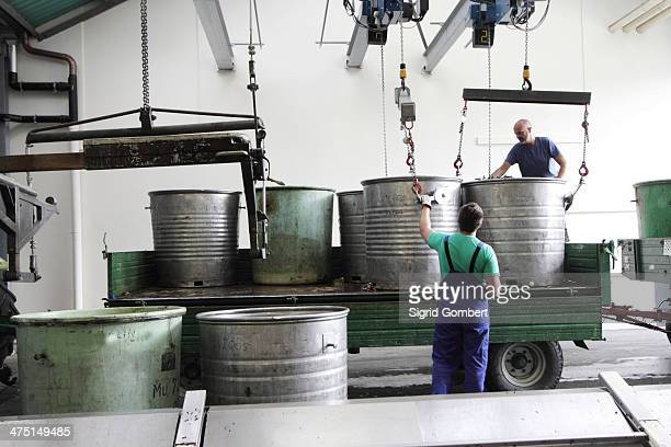 workers with containers of grapes in industrial wine cellar - sigrid gombert stock pictures, royalty-free photos & images
