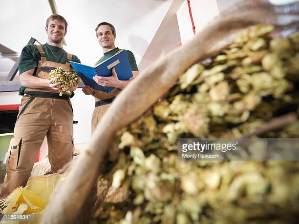 Workers with hops in brewery