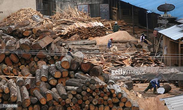 Workers work in a wood factory at a village on March 17 2006 in Panwa Kachin State Special Region 1 of Kachin State Myanmar The Kachin State Special...