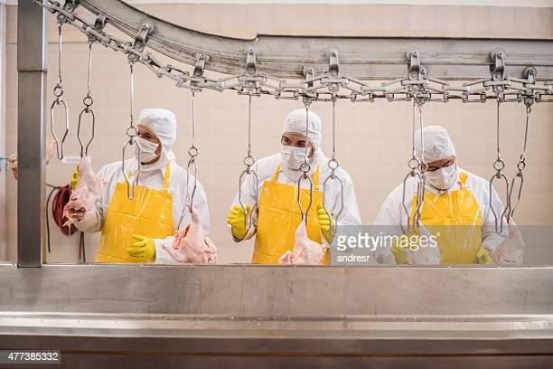 workers working at a chicken factory - huhn geflügelfleisch stock-fotos und bilder