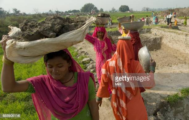 Workers working on the NREGA project in Bazida Zattan Village photographed on February 24 2010 in Karnal India