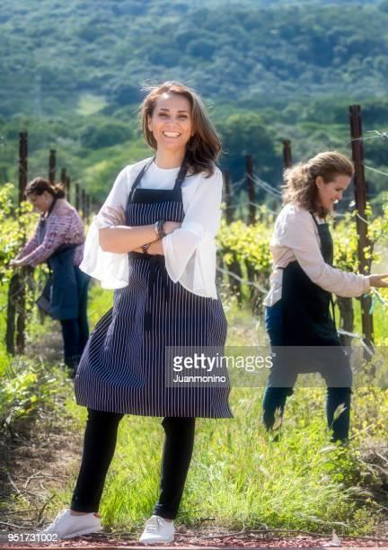 working at the vineyard - attività agricola foto e immagini stock