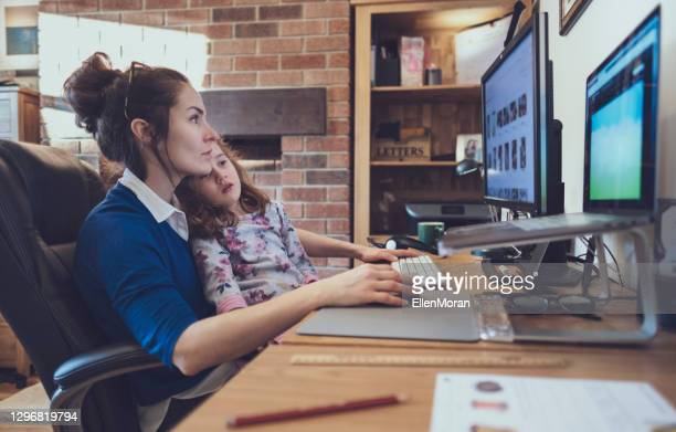 working from home - government stock pictures, royalty-free photos & images