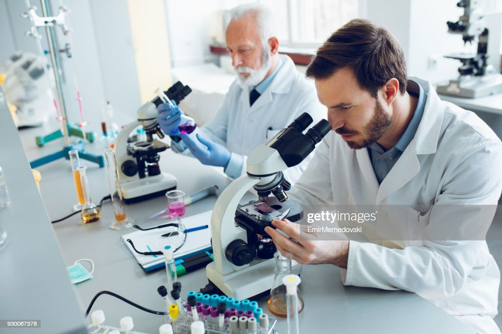 Working in a lab : Stock Photo