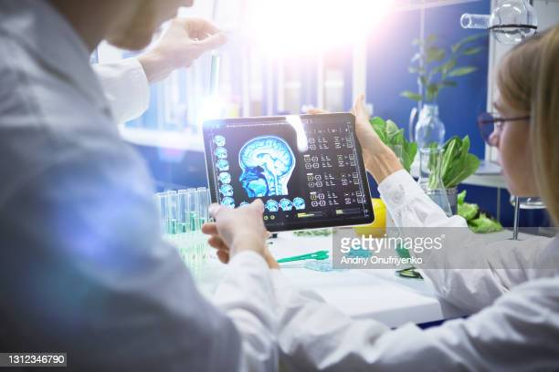 working in laboratory - scrutiny stock pictures, royalty-free photos & images