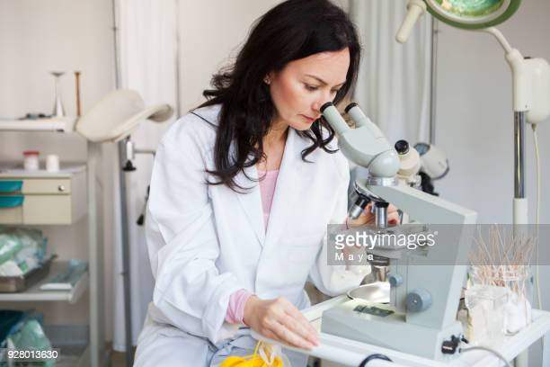 working in laboratory - human fertility stock pictures, royalty-free photos & images