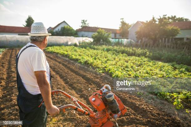 working man with motor cultivator - tiller stock photos and pictures